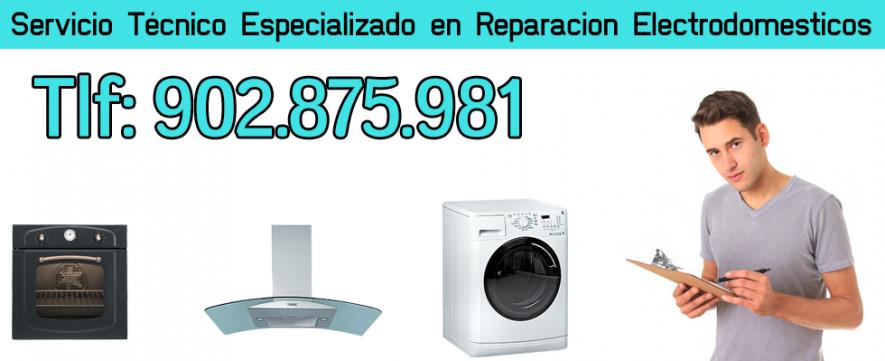 Servicio tecnico cointra zaragoza 902 929 883 for Reparacion calderas zaragoza